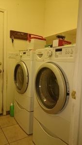 laundrypurge1